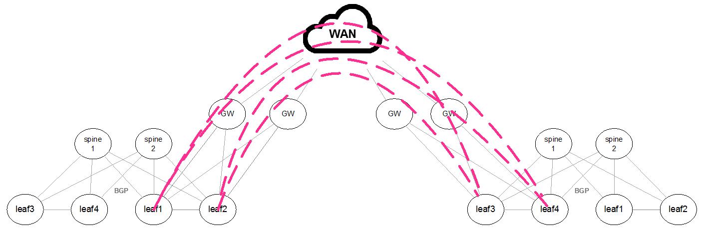 Ethernet VPN (EVPN) - Onyx v3 8 1118 - Mellanox Docs